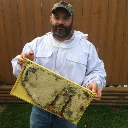 Keeping Honey Bees